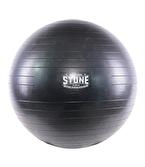 Stone Fitness Pilates Topu 55 cm